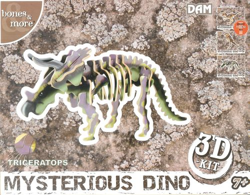 Mysterious Dino: Triceratops