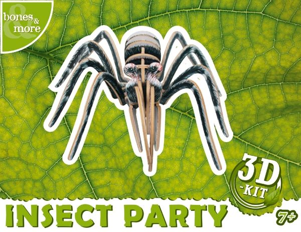 Insect Party: Spider